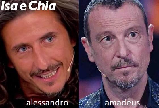 Somiglianza tra Alessandro e Amadeus
