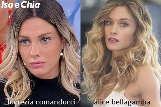 Somiglianza tra Lucrezia Comanducci e Alice Bellagamba