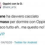 Twitter - Oppini