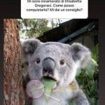 Instagram- Bettuzzi