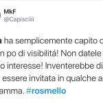 Twitter - Rosmello