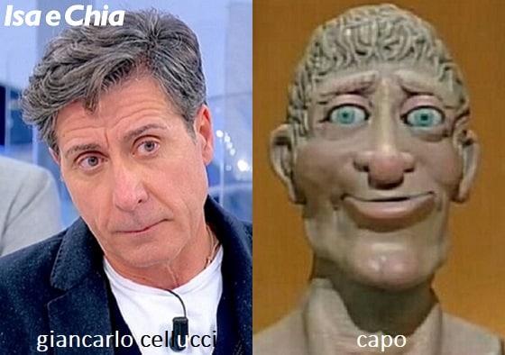 Somiglianza tra Giancarlo Cellucci, cavaliere del Trono over di 'Uomini e Donne', e Capo di 'Art Attack'