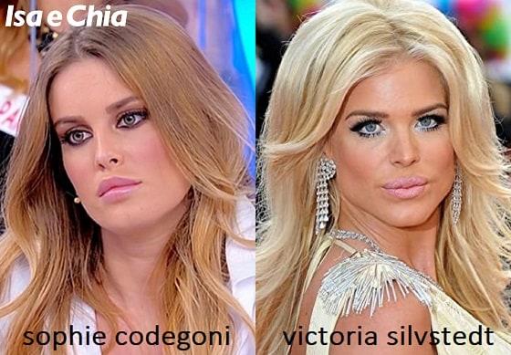 Somiglianza tra Sophie Codegoni e Victoria Silvstedt
