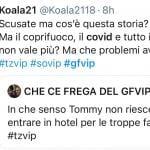 Twitter - Grande Fratello Vip 5