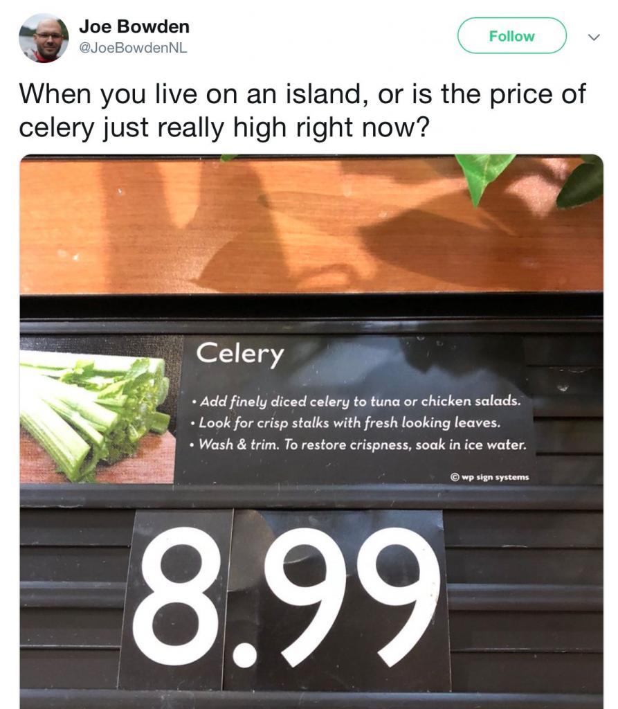 prezzo sedano canada