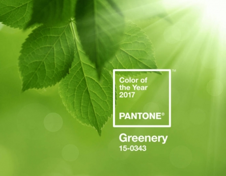 pantone-coy2017-heroshot1-rgb-696x541