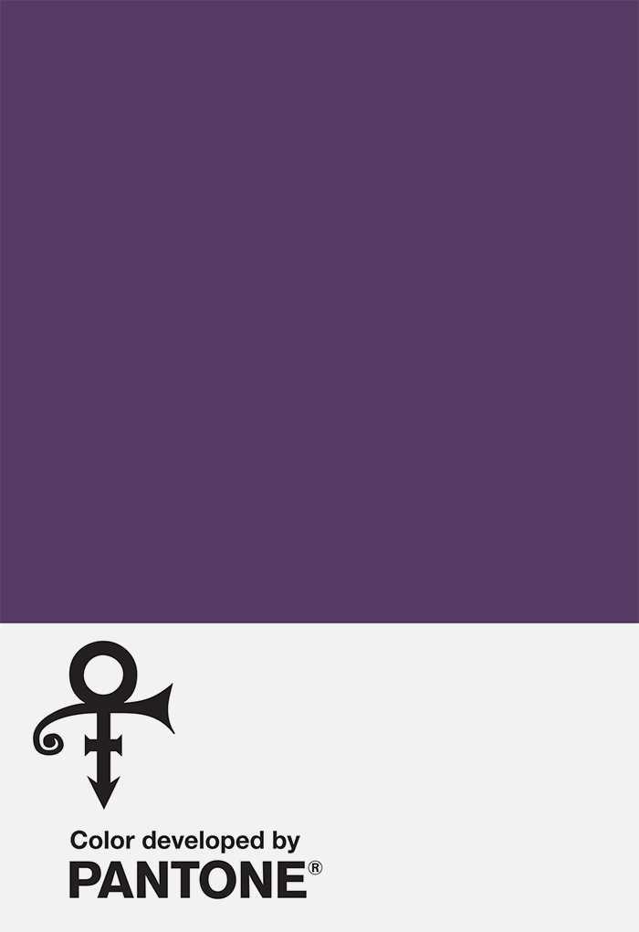 pantone-prince-purple-2