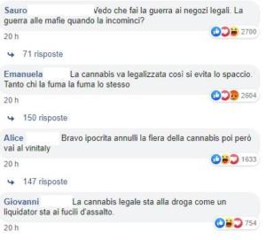 salvini cannabis 8