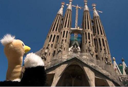 Un peluche osserva la Sagrada Familia a Barcellona