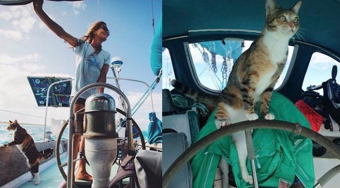 028831700_1462794043-sailing-cat-travelling-world-liz-clark-4