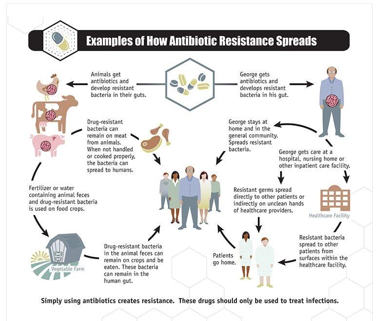 Come si diffondono i batteri farmaco-resistenti. (fonte: CDC.gov)