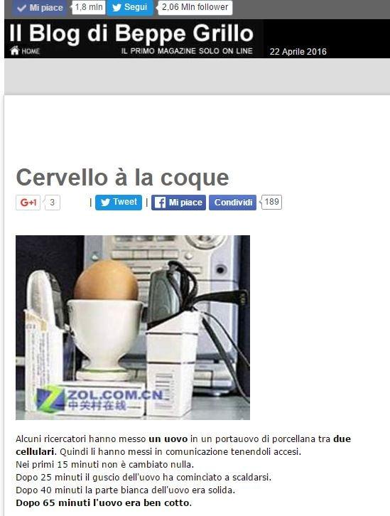 canestrari grillo cellulare uova