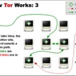 hacker tor fbi fuga - 3