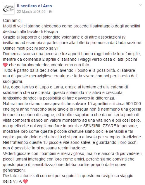 misha ares cossetto agnelli salvati - 2