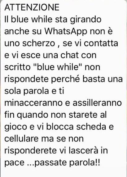blue whale whatsapp - 1