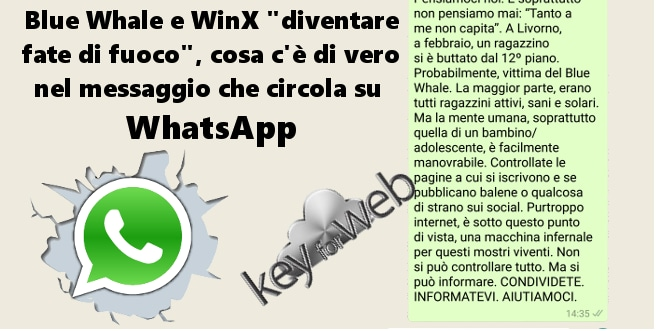 blue whale whatsapp italia - 1