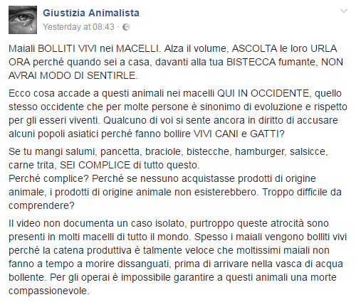 maiali bolliti vivi video giustizia animalista - 1