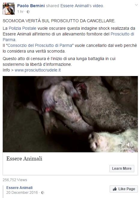 paolo bernini censura polizia postale essere animali - 1