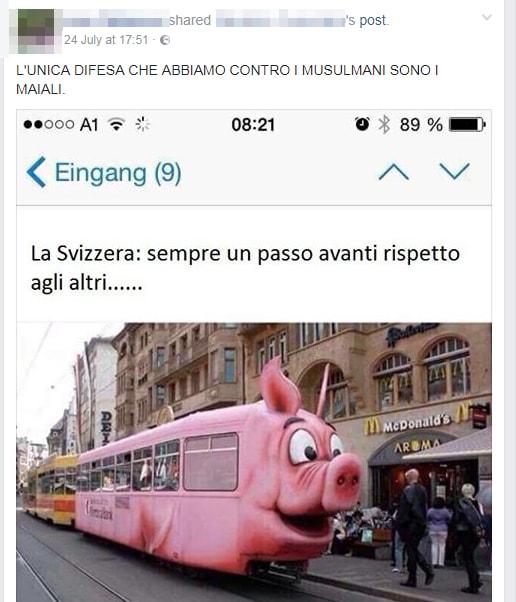 svizzera treno anti musulmani fake bufala - 2
