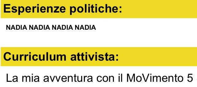 candidati premier m5s nadia piseddu