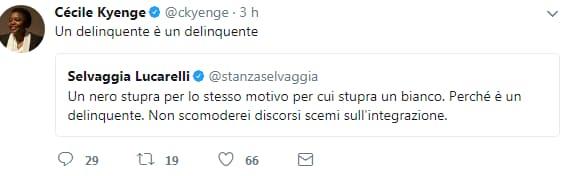 fabrizio bracconeri kyenge insulti twitter - 15