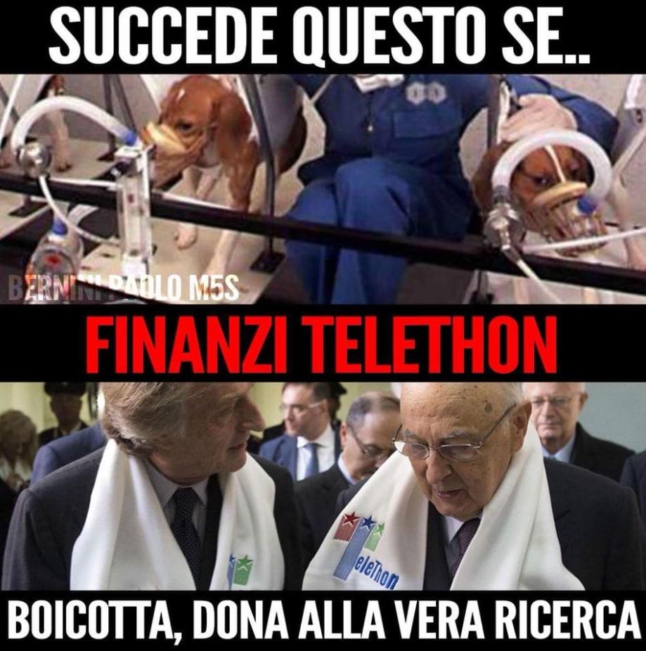 paolo bernini telethon icare ricercare tettamanti - 2