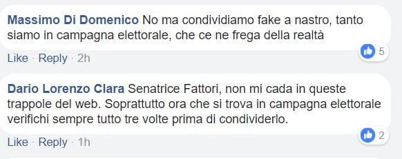 elena fattori manifesto pd fake