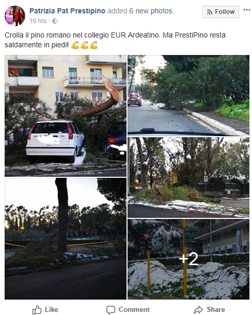 virginia raggi alberi caduti roma neve marino - 4