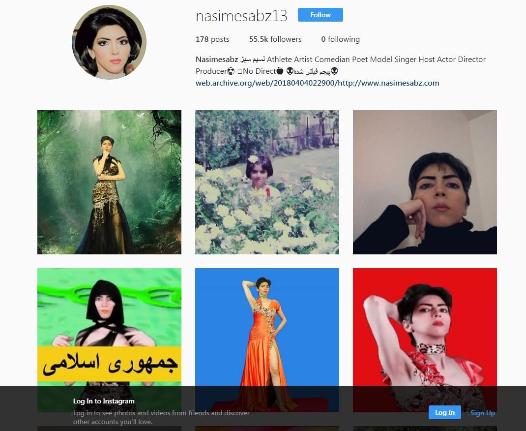 nasime sabz Nasim Aghdam youtube attentato - 6