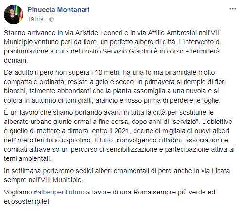 pinuccia montanari alberi VIII municipio campagna elettorale - 1