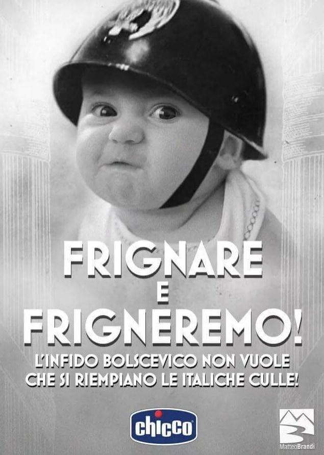 chicco pubblicità nascite italia casapound - 7