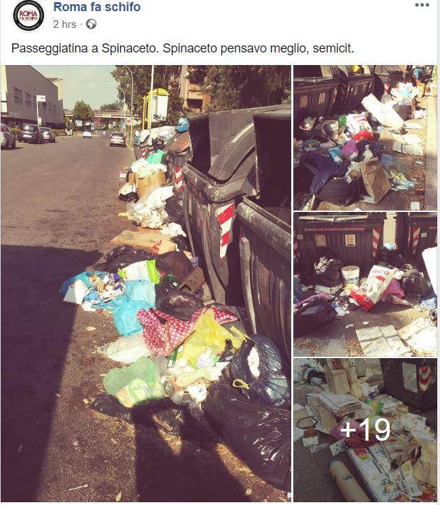 emergenza rifiuti roma