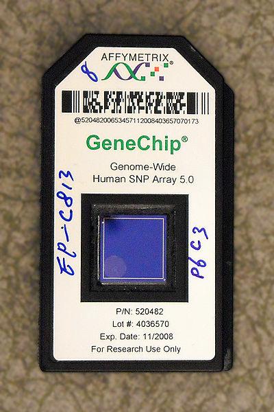 gene chip dna - 1