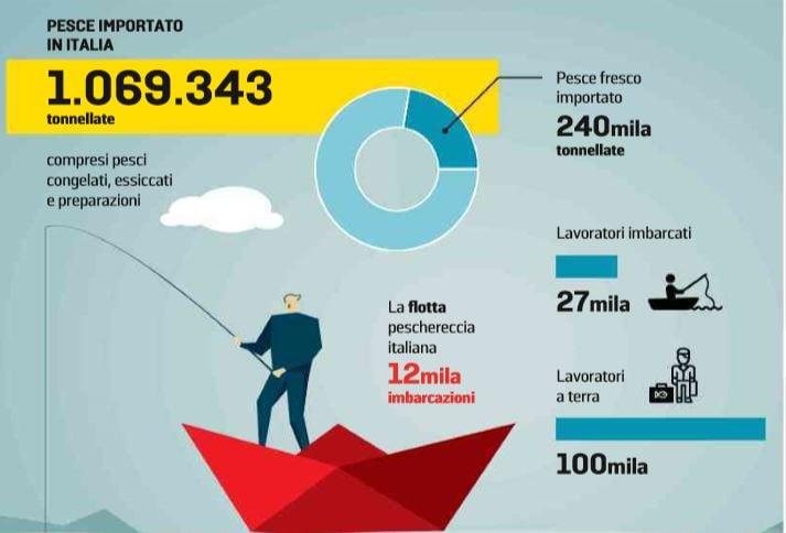 pesce italiano importato 1