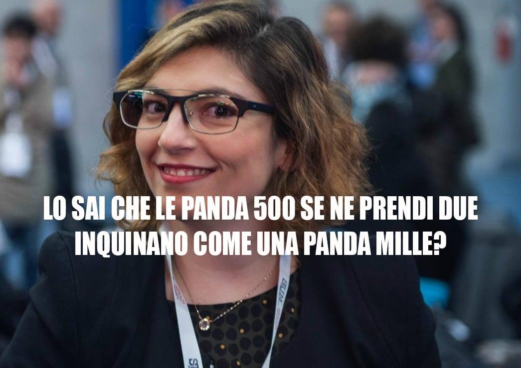laura castelli ecotassa panda 1000 - 2