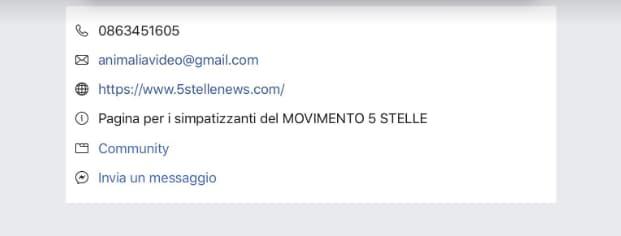 noi che vogliamo italia 5 stelle - 3