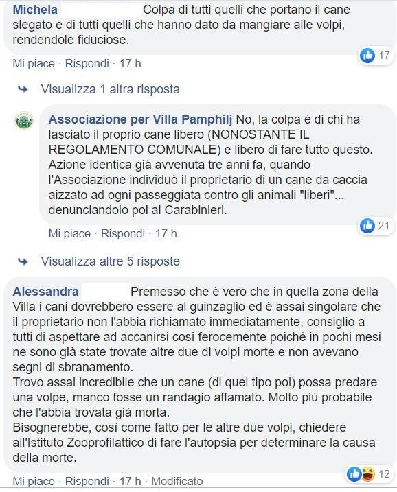 cane uccide volpe villa pamphili 1