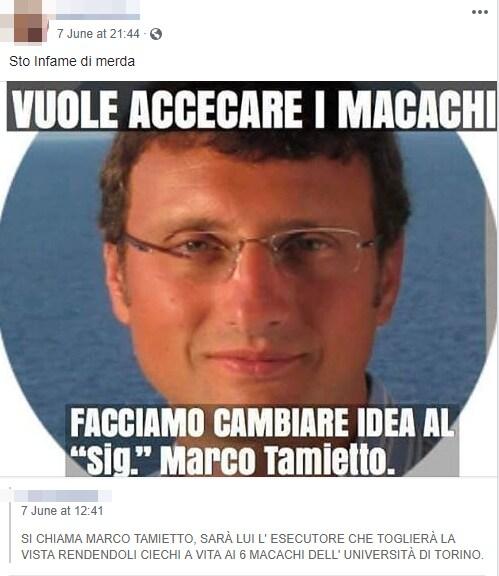 tamietto macachi torino meta animalisti insulti - 4