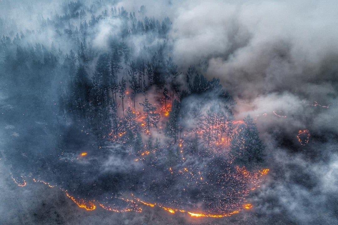 incendi siberia in fiamme