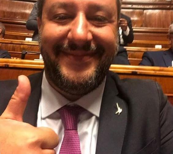 salvini taglio parlamentari voto articolo 4