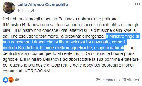 ciampolillo xylella bellanova - 1