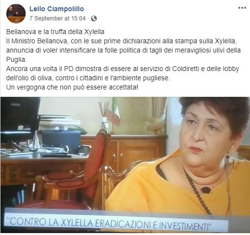 ciampolillo xylella bellanova - 2