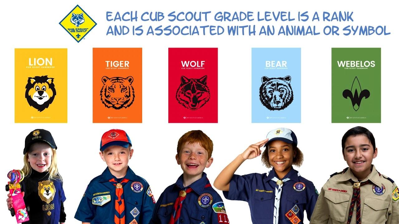 boy scouts of america 2