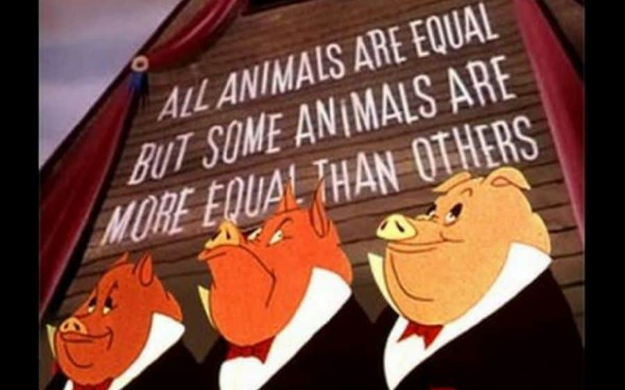 animali più uguali george orwell