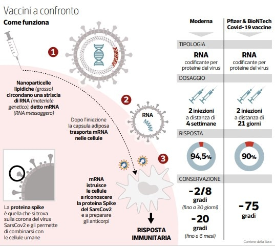 vaccino pfizer moderna differenze