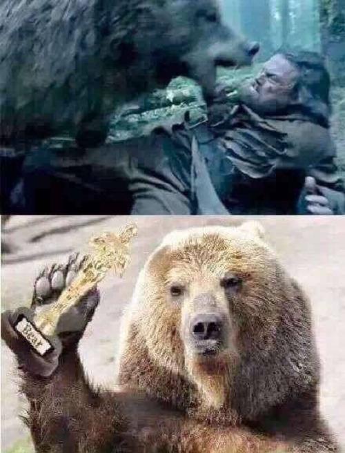 orso stupro di caprio revenant - 1