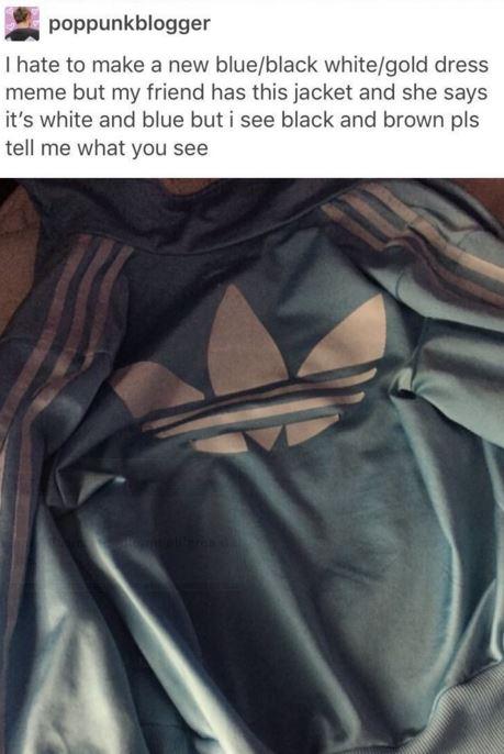 adidas jacket felpa