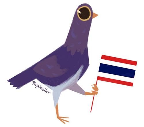 piccione viola facebook da dove viene