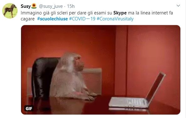 scuole chiuse lezioni su skype 2