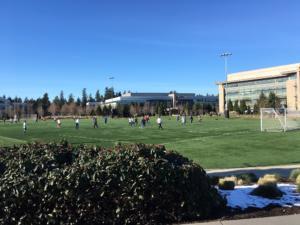 campus aziendale a Seattle